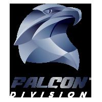 BBOX Security Seguridad guardias virtuales falcon logo - Servicio de Central de Monitoreo en Guadalajara | BBOX Security